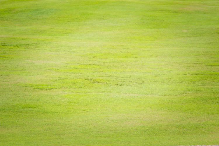 Full frame shot of golf course