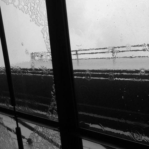 EyeEm Best Shots - Black + White Lookingup Minimalism Rainy Day