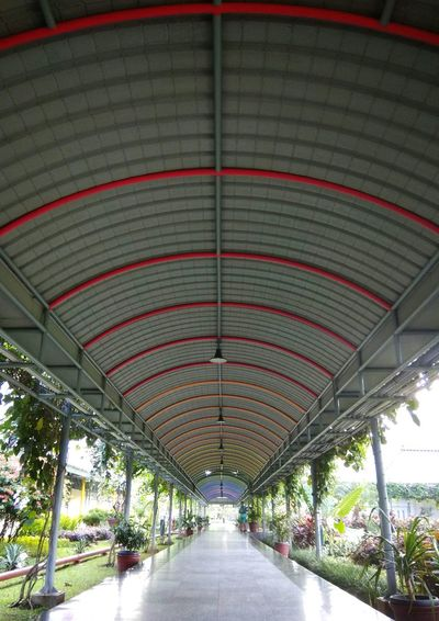 Canopy Architecture The Way Forward Built Structure No People Outdoor Canopy Walk Canopy Rainbow Colors Rainbow Indoors  Day Repetition Pattern