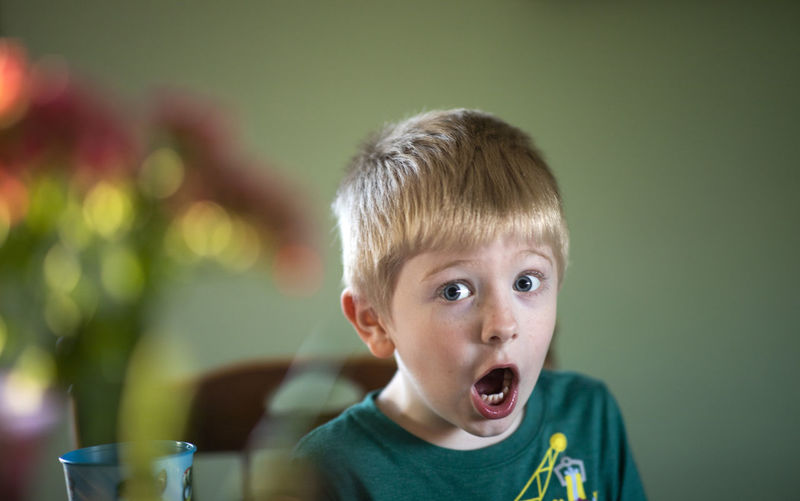 A five-year-old boy gives a strong expression of surprise while sitting at the dining room table. Childhood Child Portrait Headshot Boys Mouth Open Mouth Men Males  Offspring Looking At Camera One Person Front View Blond Hair Surprise Innocence Focus On Foreground Shock Hair Eyebrow Home Alone Flowers Flower Indoors  Natural Light Boyhood Expression Strong Expression Green Surprised Surprise Face