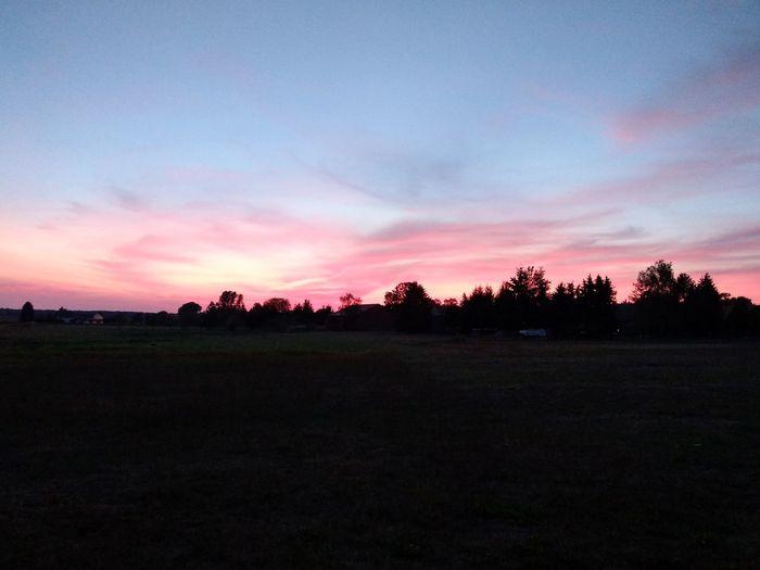 Tree Sunset Rural Scene Agriculture Field Sky Landscape Cloud - Sky
