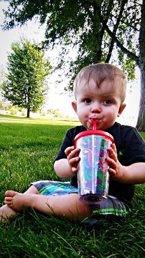 Mommy's pop Grass Drinking Drink Food And Drink Childhood Tree Refreshment Boys Front View Thirsty  Drinking Straw Sitting One Person Real People Holding Toddler  Drinking Glass Outdoors Field
