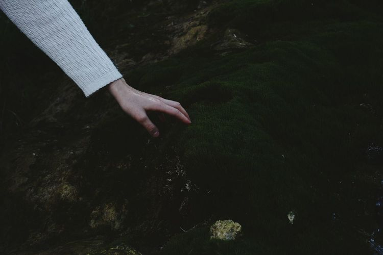 Cropped hand of woman touching moss on rock