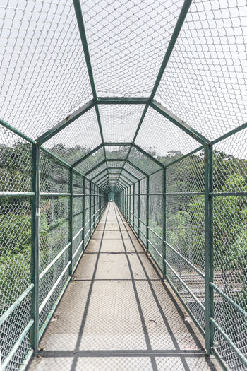 View of greenhouse