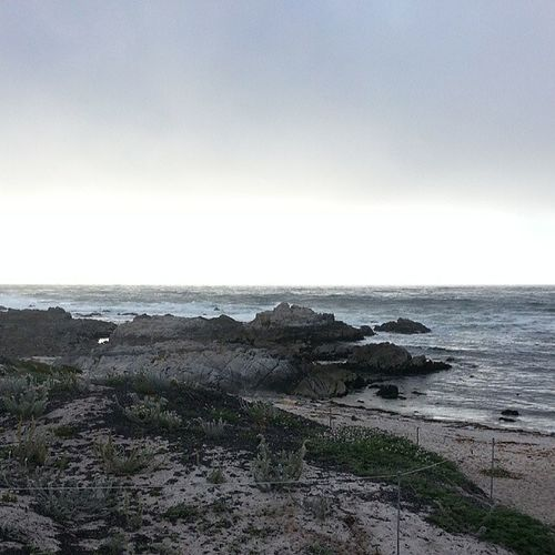 Love how its below 55 degrees here! Monterey BeachWeather Beach
