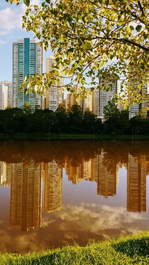 Water Reflection Tree Architecture Built Structure No People Building Exterior Day Sky Outdoors Nature Grass Flower City Reflection Fragility Garden Nature Freshness Plant Beauty In Nature Petal Fimdetarde🌄🌇 LagoIgapó