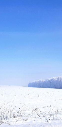 Russians winter