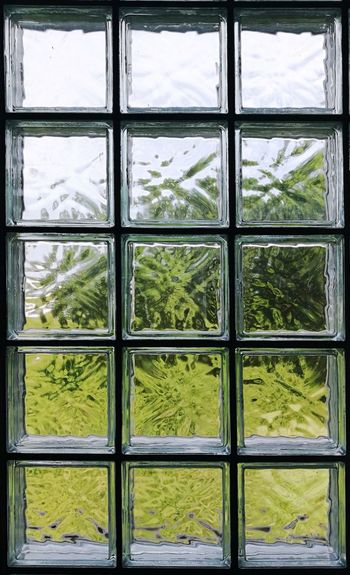 clear glass block Brick Wall Glass Blocks Indoors  Freshness Green Color Square Architecture Window The Graphic City