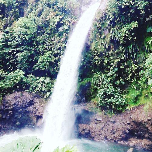 Catarata de la paz Nature Waterfall Beauty In Nature