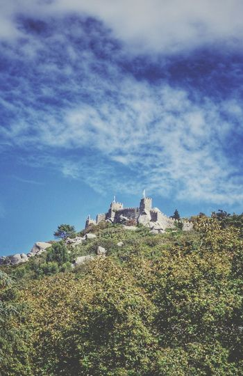 Castelos dos Mouros Sintra Sintra (Portugal) Sintra, Portugal Sintra Castelos Dos Mouros Castle Old Castle Tree Top Ancient Architecture Ancient History Old Landmark Cloyds And Sky Architecture Sky No People Built Structure Building Exterior Cloud - Sky Day Nature Outdoors