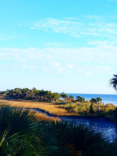 Water Sky Cloud - Sky Tree Blue Nature Landscape Lake Scenics Palm Tree Beauty In Nature Outdoors Day No People Sand Dune Grass