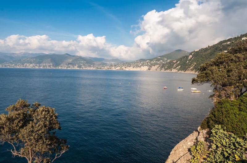 Punta Chiappa - Ligurian shoreline Beauty In Nature Camogli Cloud - Sky Irix 15mm Landscape Liguria Liguria Di Levante Ligurian Coast. Ligurian Sea Liguriansea Mountain Nautical Vessel No People Outdoors Porto Pidocchio (Liguria) Punta Chiappa Scenics Sea Seascape Shore Shoreline Sky Sori Travel Destinations Water