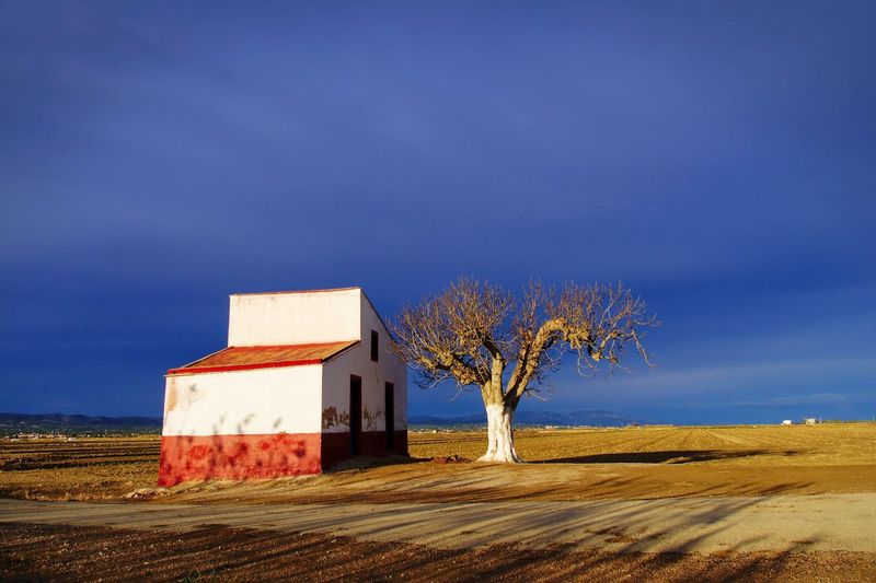 Rural Scene Sky