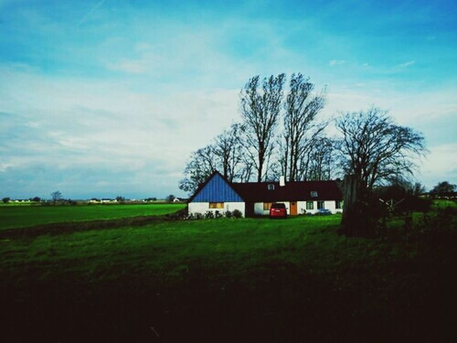 EyeEm Nature Lover Sky_collection Nature Home Sweet Home
