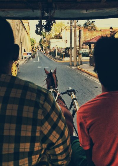 Rear view of men sitting on horse-drawn carriage in city