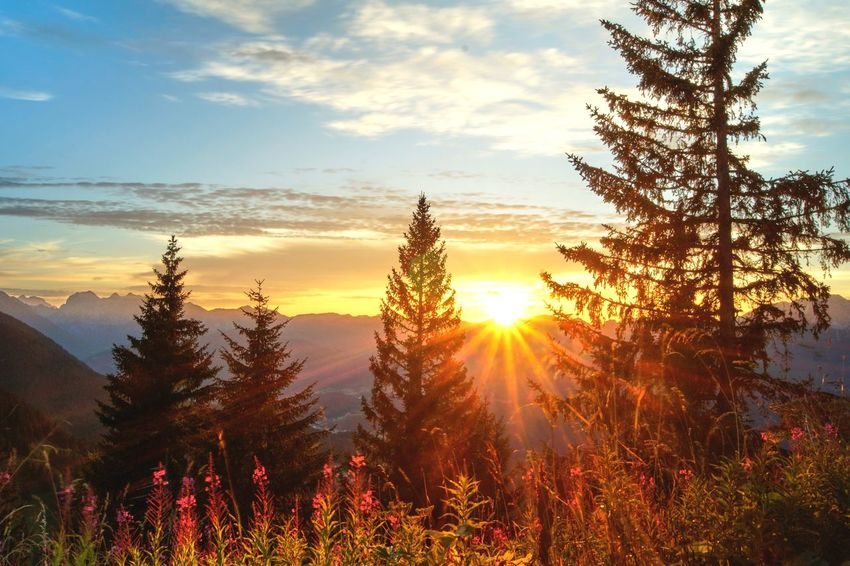 Sunset in Mountains ⛰ Wanderlust Sunset Nature Sun Sky Beauty In Nature Tranquil Scene Tranquility Scenics Tree No People Sunlight Cloud - Sky Outdoors Growth Landscape Mountain Day