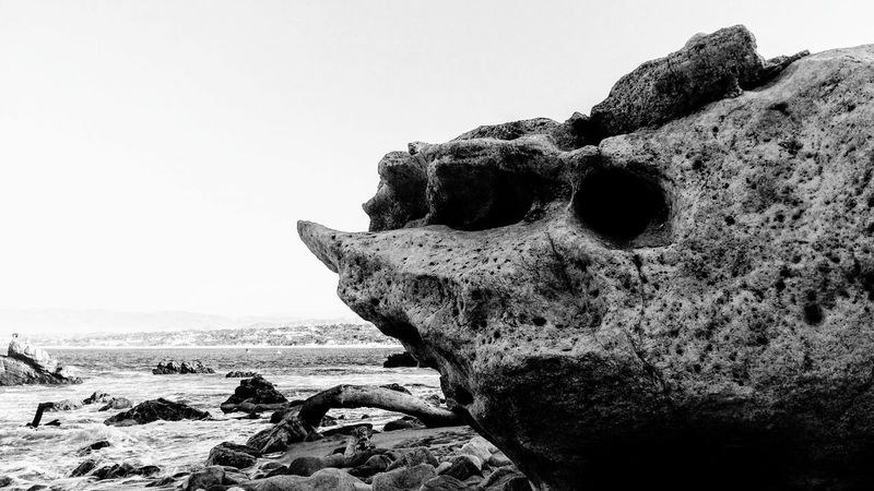 Era un rinoceronte Beauty In Nature Nature No People Outdoors Rocks Rocks And Sea Rinocerontes Fosils Blackandwhite Photography