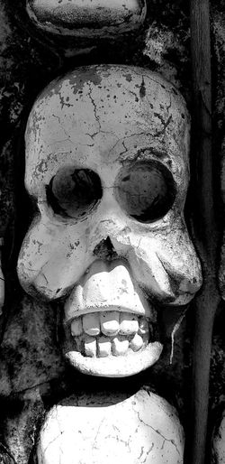 Human Face Skull