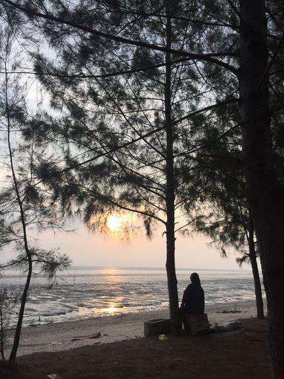 Contemplation at sunset Tanjung Dawai Kedah