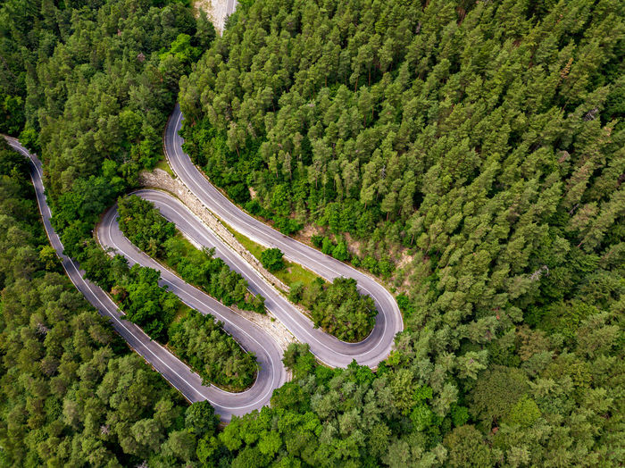 A winding road visible from the air, between green forests