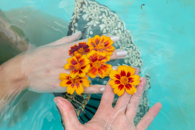 Cropped hand of man and woman holding flower in swimming pool