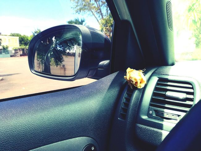 In my car skoda monte carlo . Voiture Retro Skoda Flower Roses Jaune🌻 Jaune Reunionisland 🌴 The Week On Eyem Huaweip9lite Lumière Interieur Car Sun Drivebyphotography Land Vehicle Mode Of Transport Transportation Reflection Tree Side-view Mirror No People Close-up Vehicle Mirror Day Nature