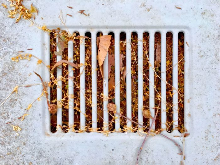Mother Nature always wins over. Autumn Leaves Filled Abandoned Car Close-up Dead Leaves Deterioration Fall Grate Grid Iron - Metal Leaves Metal Metal Grate Old Pattern Rusty Weathered