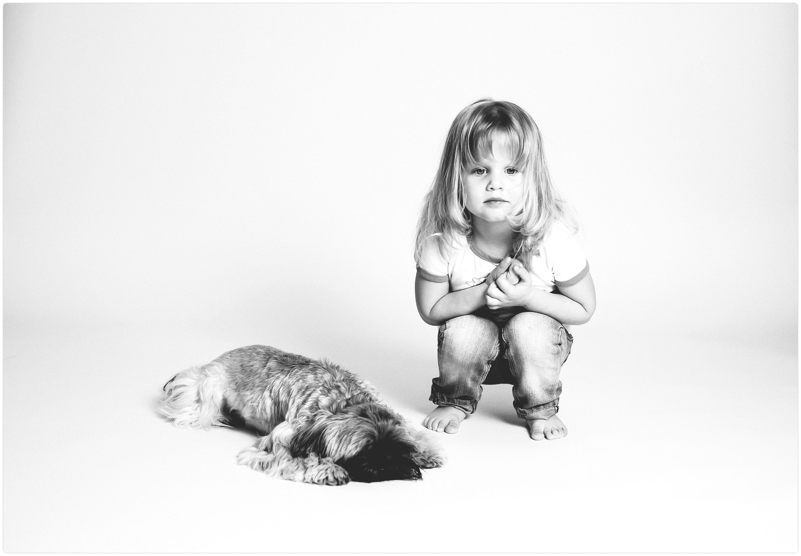 full length, childhood, sitting, pets, girls, domestic animals, one animal, front view, one person, elementary age, animal themes, studio shot, mammal, domestic cat, playing, white background, real people, indoors, day, people