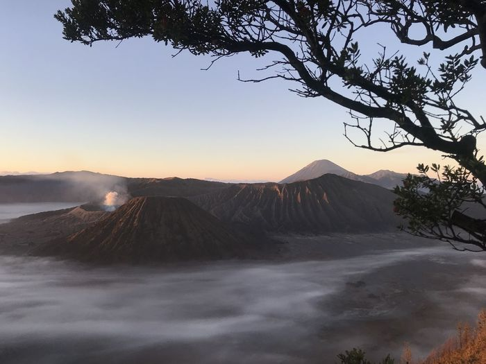 mount BROMO Tree Astronomy Sunset Fog Mountain Sky Landscape Snowcapped Mountain Snow Covered Tranquil Scene Pine Tree Snowcapped Pine Woodland Ski Lift Zermatt Snow Mountain Range Tranquility Countryside Ski Track Needle - Plant Part Pine Cone Weather Calm Verbier Scenics Rocky Mountains Pinaceae