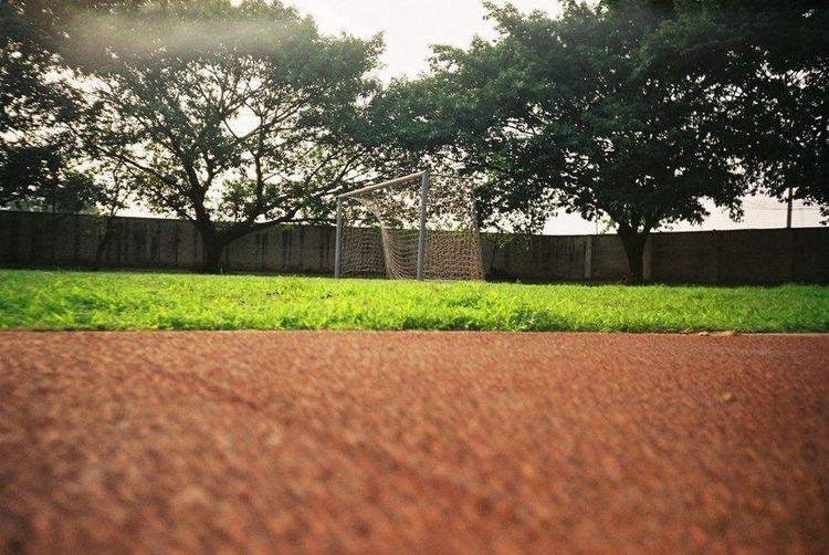 校园的跑道,小伙伴,我想你们了…
