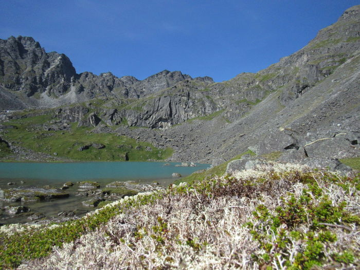 Lower Reed Lake Hatchers Pass Alaska Alaska Remote Glacial Lake Alpine Scenics Wilderness Stream River Lake Awe Mountain Water Sky Grass Landscape Plant Mountain Range Geology Rocky Mountains Physical Geography Rock Formation Rugged Tranquil Scene