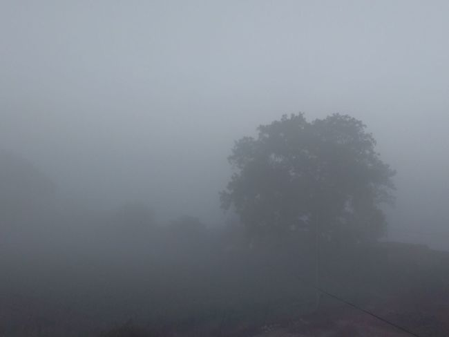 My Winter And Fog Cool Collection.. Taking Photos Enjoying Life