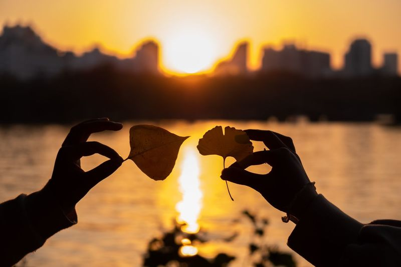 love Human Hand Sunset Hand Sky Real People Human Body Part Focus On Foreground Lifestyles Human Finger Love Nature Body Part