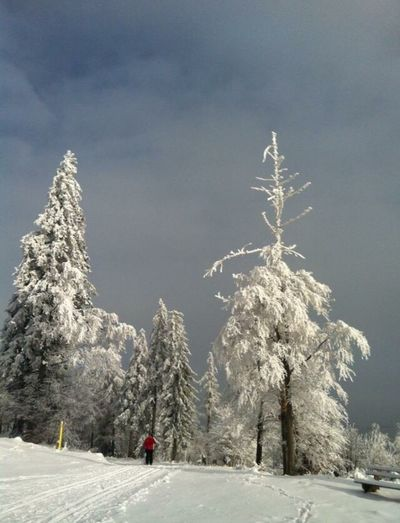 Winter Landscape GERMANY🇩🇪DEUTSCHERLAND@ Tadda Community EyeEm Nature Lover Daswasichsehe😊