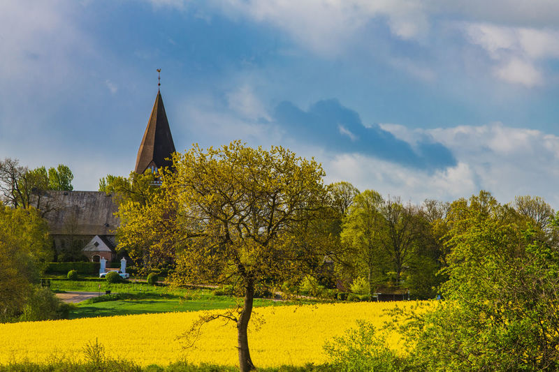 Rapeseed Field Rapeseed Church Birdnest Village Life Village Green Field Easter Spring Springtime Lamb Sunset Germany Built Structure Architecture Spirituality Belief