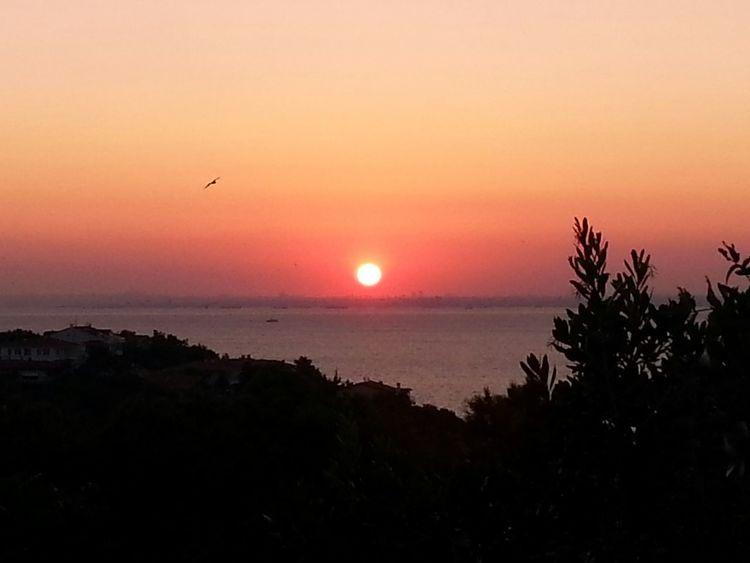 Burgazada Gunbatimi Sunset PhotoByMuratGul