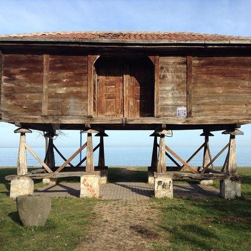 Fatsa Sahil de sergilenen Tarihi Serenti ordu karadeniz unye eski nostalgia nostalji eski eskici architech mimari