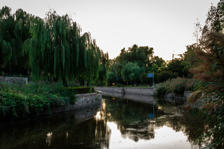 City Dynasty Reflection Sunlight Tree Wall YUAN Architecture Beauty In Nature Bridge - Man Made Structure Canal Capital Day Dusk Growth Moat Nature No People Outdoors Park River Sky Sunset Tree Water