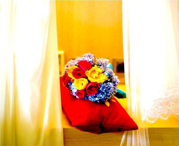 Flower Curtain Freshness Petals🌸 Hydrengea EyeEm Flower