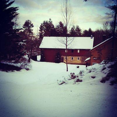 Winter wonderland. Winter Snow Norgetrengerbonden Boraas gård farm småbruk january januardag snø white blanket teppe idyll