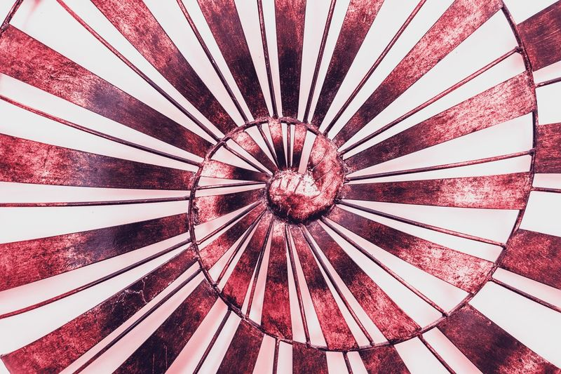 Red tones Red Tones Spiral Backgrounds Full Frame Pattern Red No People Close-up Geometric Shape Circle Umbrella Shape Day Protection Nature Outdoors Parasol Security Striped Directly Above Directly Below Flower