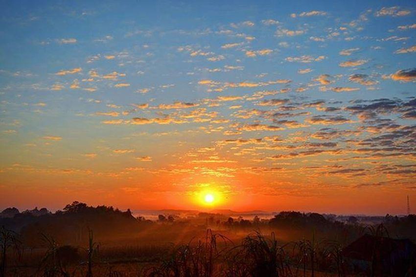 🙏🌞💗🍀 Riograndedosul Sunrise Brazil_repost Ig_riograndedosul_ Igersrs Instadozamigos Vitrinevisual Braznu Doleitorzh Ilovebrasil Sun Nature Follow