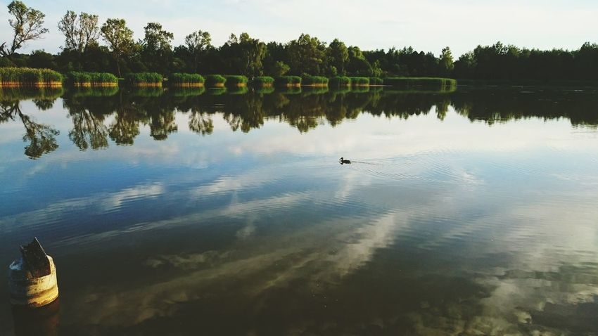 Afternoon and my hometown lake