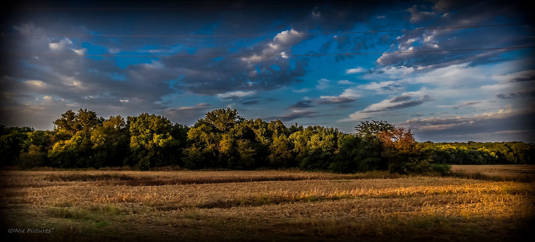 Agriculture Cloud - Sky Dramatic Sky Nature Rural Scene No People Landscape Outdoors Tranquility Beauty In Nature Sky