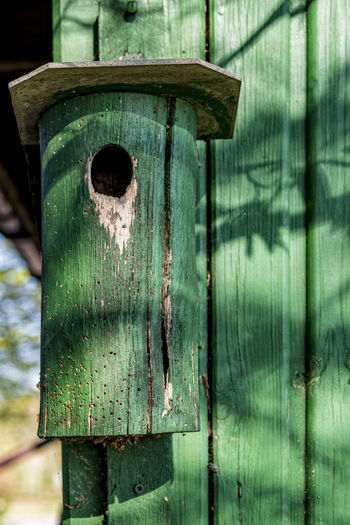 Green Aviary Aviary Birdhouse Day Green Color No People Outdoor Sunlight And Shadow Wood - Material