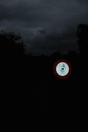 Light painting on tree against sky at night