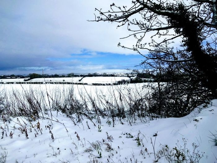 Winter Cloud - Sky Beauty In Nature Tranquility Tree Frozen Landscape Hills And Valleys Mountain Skyline Northern Ireland Love Nature🌲 Garden Photography No People Snow ❄ Beautiful Beauty In Ordinary Things Outdoors