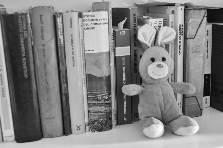 Biblioteca Blach&white Black & White Black And White Black And White Collection  Black And White Photography Black&white Blackandwhite Blackandwhite Photography Blackandwhitephotography Books Day Library Little Bunny Peluche Still Life
