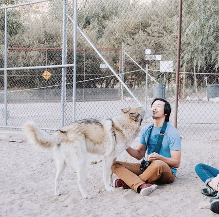 Connected By Travel EyeEm Selects Nature Walk Wolf Wolf Dog Wolves♥ Outdoors Bonding South California Palmdale Kisses