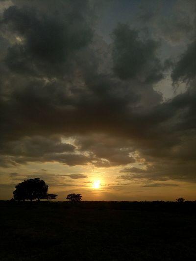 Sunset Summerlight Outdoors Silhouette Landscape